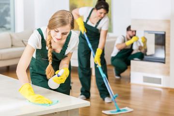 Impresa di pulizie economica Roma
